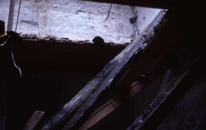 13 1977 fevrier poutres puydrouard