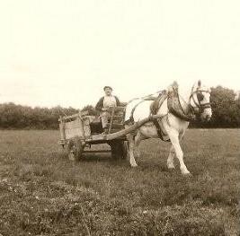 Chariot lisette camille