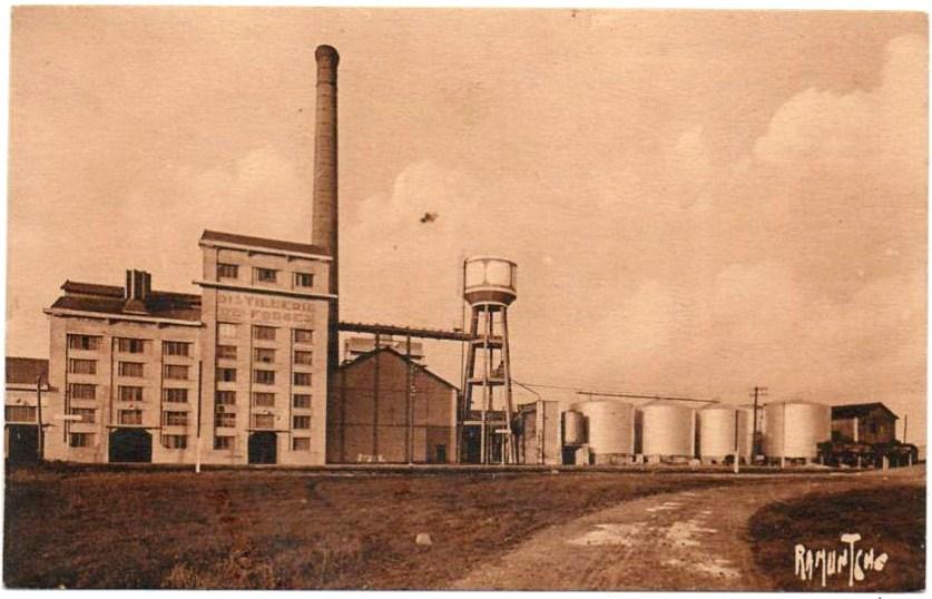 Le magnou forges d aunis distillerie et cuves1950